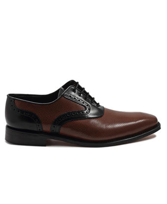 Picture of Biocular Oxford - Brown