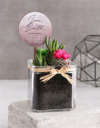 Picture of Personalised Succulent Mix In Square Vase